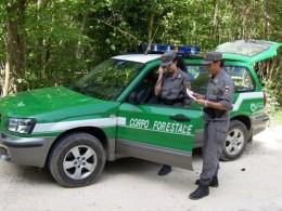 Bandito il Concorso 2015 nel Corpo Forestale dello Stato
