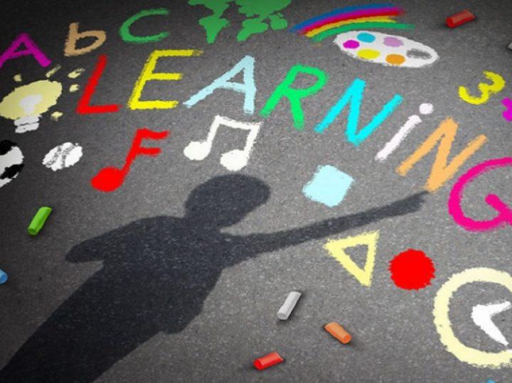 Analisi della bozza del nuovo decreto legislativo sull'inclusione scolastica degli studenti con disabilità