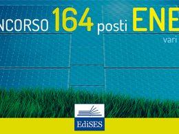164 posti presso l'ENEA: pubblicati bandi per assunzioni a tempo indeterminato