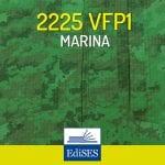 Concorso per 2225 VFP1 Marina Militare: pubblicato il bando