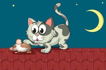 Lo schema del bullismo: il gatto e il topo