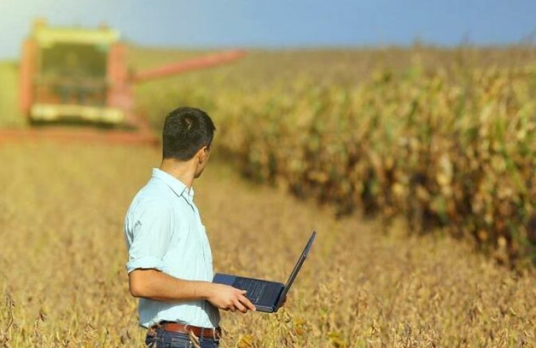 Concorso per 35 funzionari agrari presso il Ministero delle Politiche Agricole