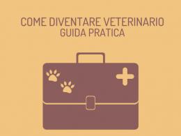 Come diventare veterinario: tutto quel che c'è da sapere