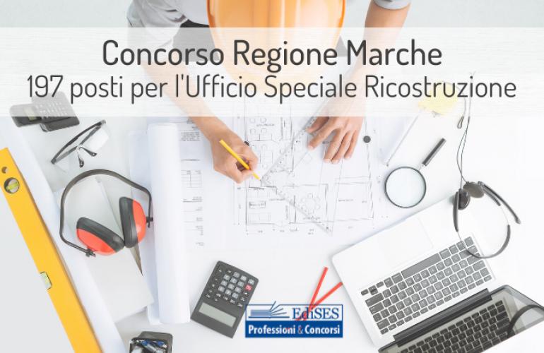 Regione Marche: concorso per 197 diplomati e laureati